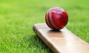 All about Cricket [History, Rules, ...]